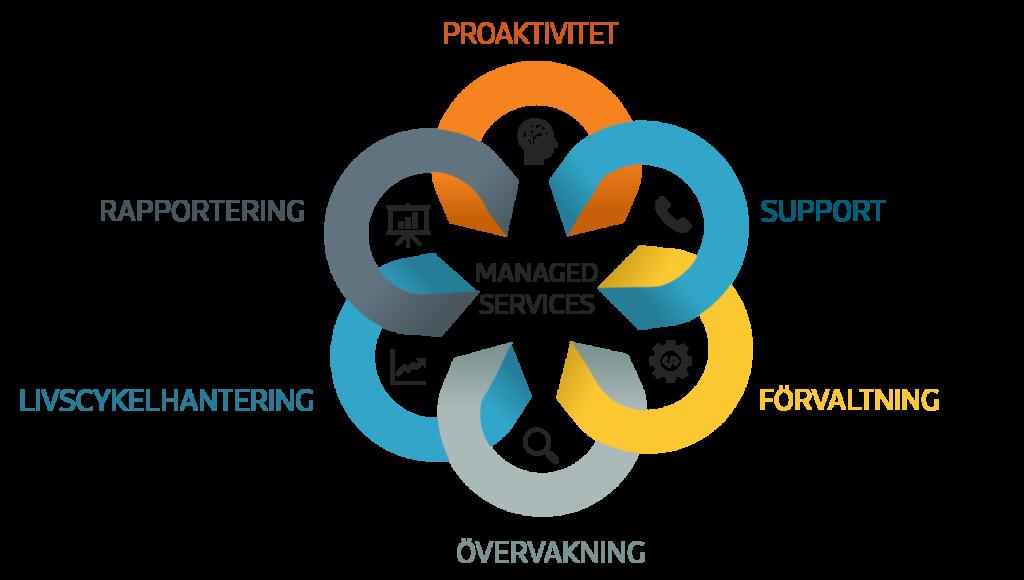 Managed Services på Infozone